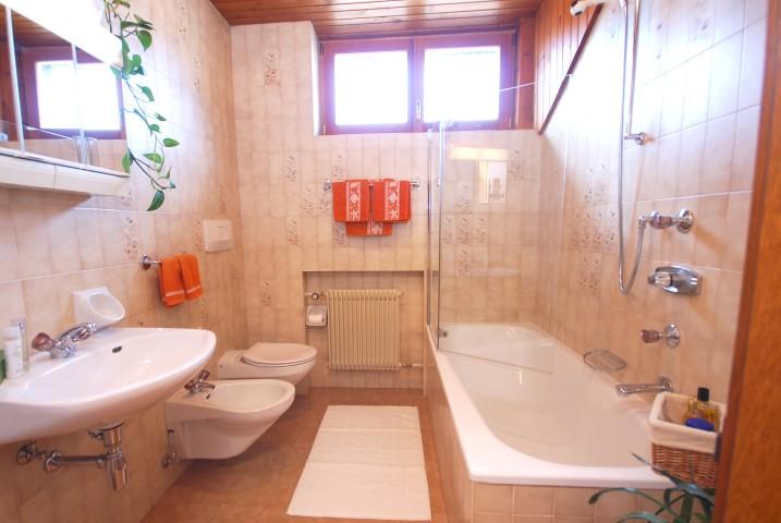 spacious bathroom apartment Stella Alpina